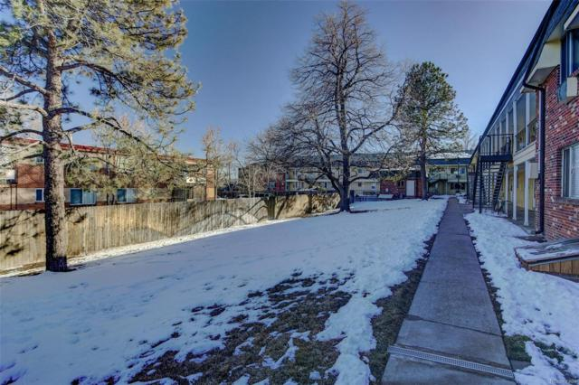 7050 W Cedar Avenue #206, Lakewood, CO 80226 (#3077226) :: Bring Home Denver