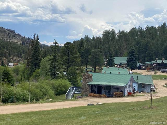 57920 Us Highway 285 #10, Bailey, CO 80421 (#3157512) :: Chateaux Realty Group