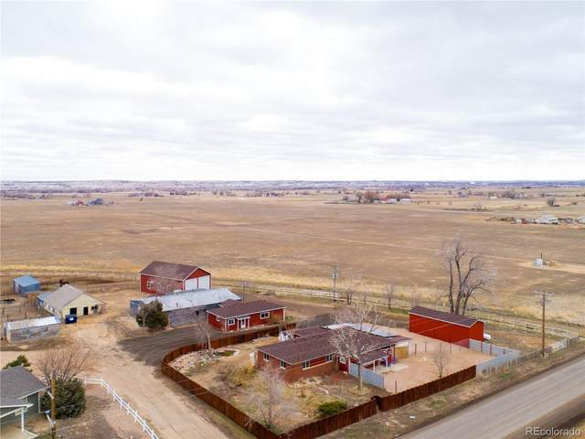 3842 County Road 21, Fort Lupton, CO 80621 (MLS #3483415) :: 8z Real Estate