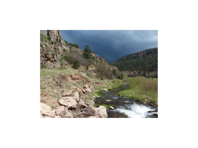 Shelf Road, Cripple Creek, CO 80813 (MLS #3491757) :: 8z Real Estate
