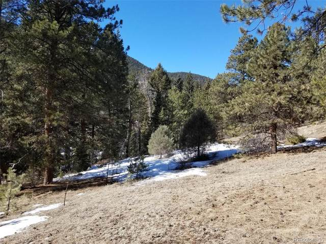 13450 S Foxton Road, Conifer, CO 80433 (#3534080) :: Chateaux Realty Group