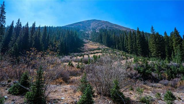 0000 Stevens Gulch Road, Silver Plume, CO 80476 (#3567584) :: Sultan Newman Group