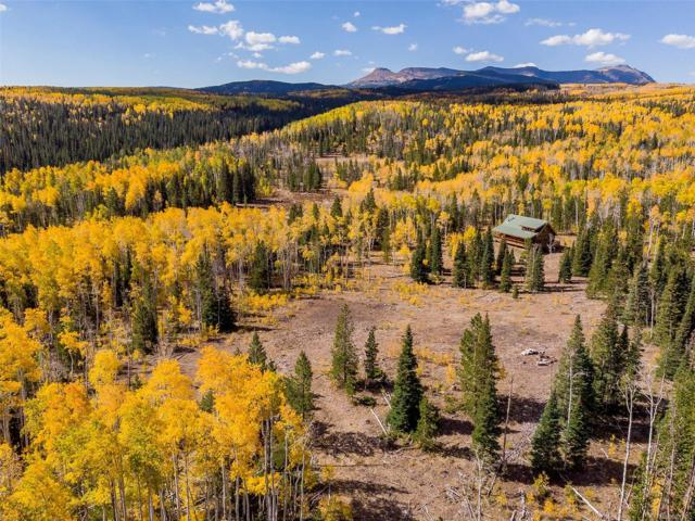 24505 County Road 3B, Yampa, CO 80483 (MLS #3568361) :: 8z Real Estate