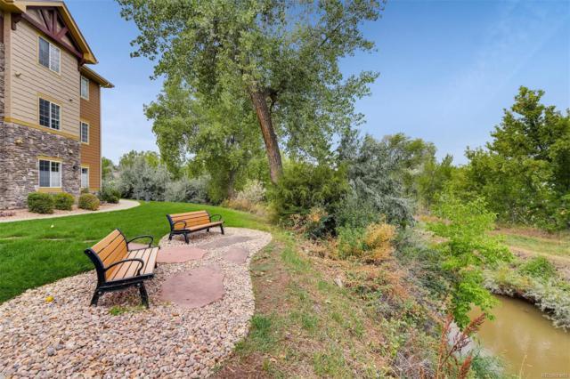 8035 Lee Drive #204, Arvada, CO 80005 (#3579956) :: Wisdom Real Estate