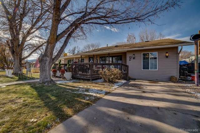 545 N Cottonwood Avenue, Canon City, CO 81212 (#3585045) :: Realty ONE Group Five Star