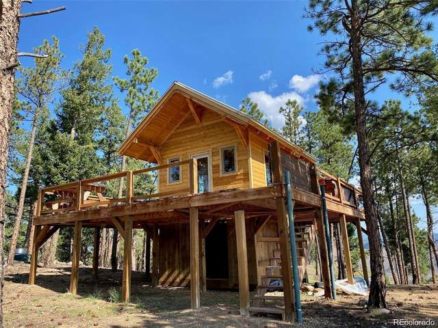 7 Holmes Gulch, Bailey, CO 80421 (#3611111) :: The Healey Group