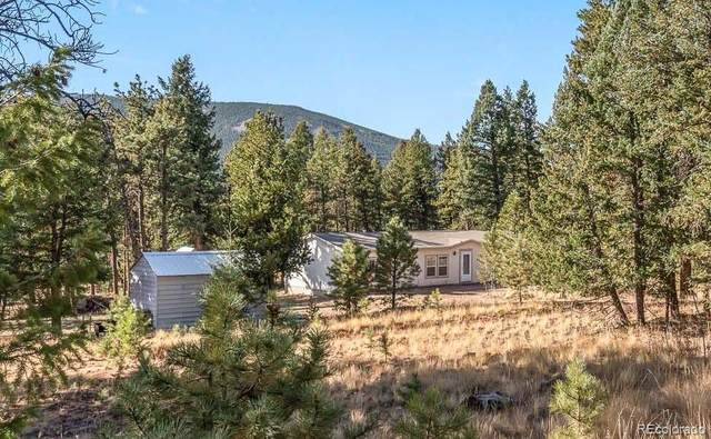 580 Forest Drive, Bailey, CO 80421 (#3619765) :: The DeGrood Team