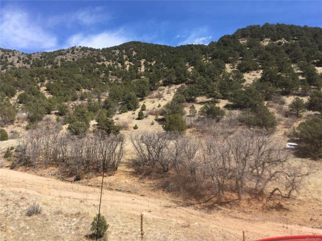 000 Dave Drive, Canon City, CO 81212 (MLS #3639481) :: 8z Real Estate