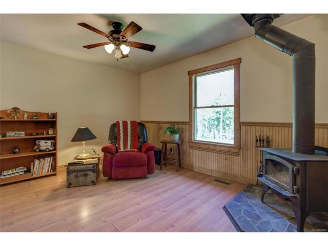 22656 Oehlmann Park Road, Conifer, CO 80433 (MLS #3653164) :: 8z Real Estate
