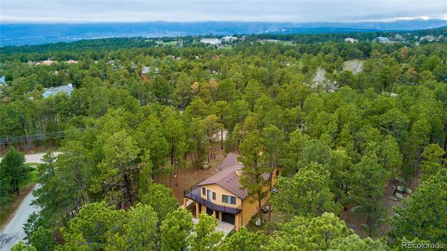 170 W Stirrup Trail, Monument, CO 80132 (#3663024) :: The DeGrood Team