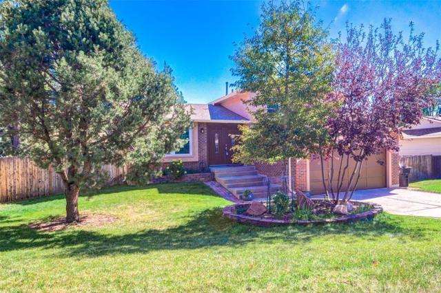 5315 Meadowgreen Drive, Colorado Springs, CO 80919 (MLS #3798298) :: 8z Real Estate