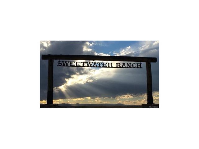 10375 Big Sky Trail, Elbert, CO 80106 (MLS #3942842) :: 8z Real Estate
