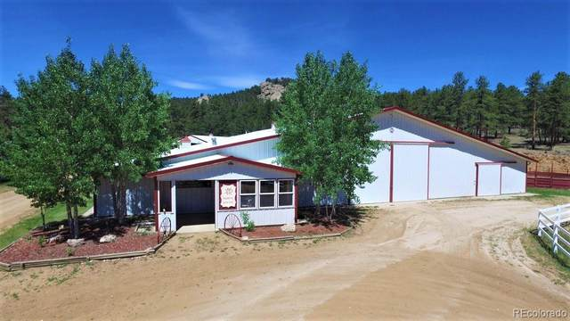 7916 County Road 92, Lake George, CO 80827 (#4037872) :: The HomeSmiths Team - Keller Williams
