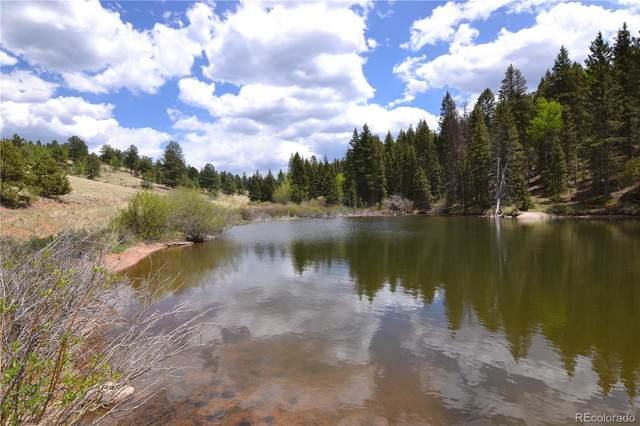 4195 Cedar Mountain Road, Divide, CO 80814 (#4052642) :: iHomes Colorado