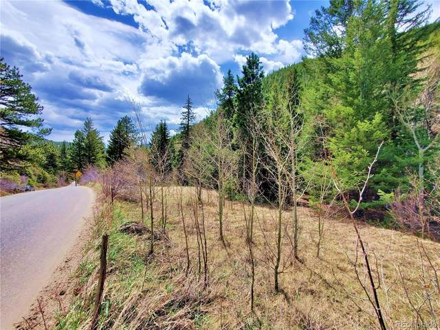 1265 Mill Creek Road, Dumont, CO 80436 (#4059694) :: Finch & Gable Real Estate Co.