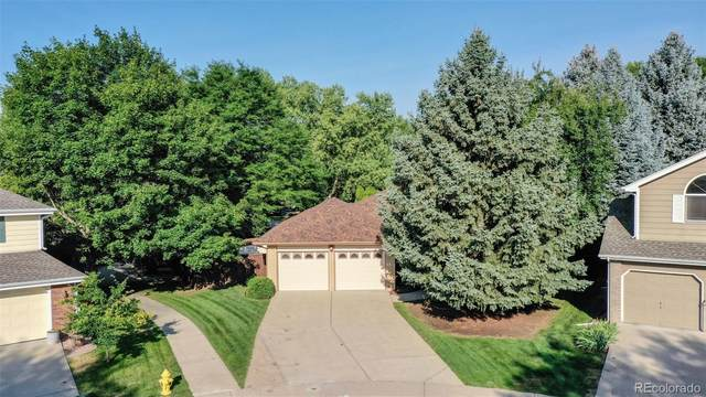 1100 Live Oak Court, Fort Collins, CO 80525 (MLS #4072433) :: 8z Real Estate