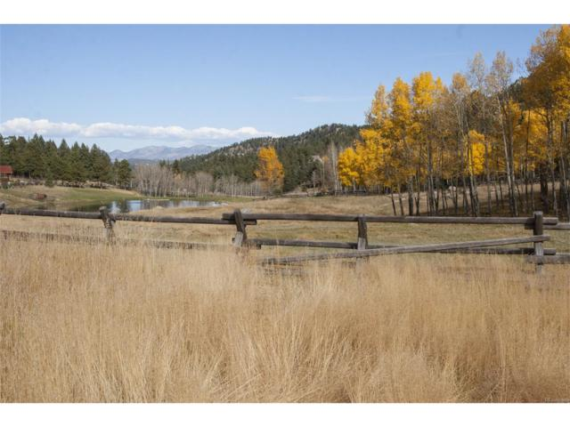 6543 Little Cub Creek Road, Evergreen, CO 80439 (MLS #4096355) :: 8z Real Estate