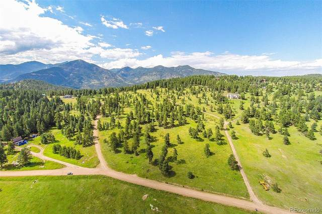 33391 Buffalo Park Road, Evergreen, CO 80439 (MLS #4249570) :: 8z Real Estate