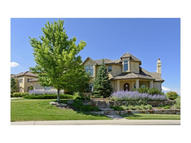 992 Michener Way, Highlands Ranch, CO 80126 (MLS #4519568) :: 8z Real Estate