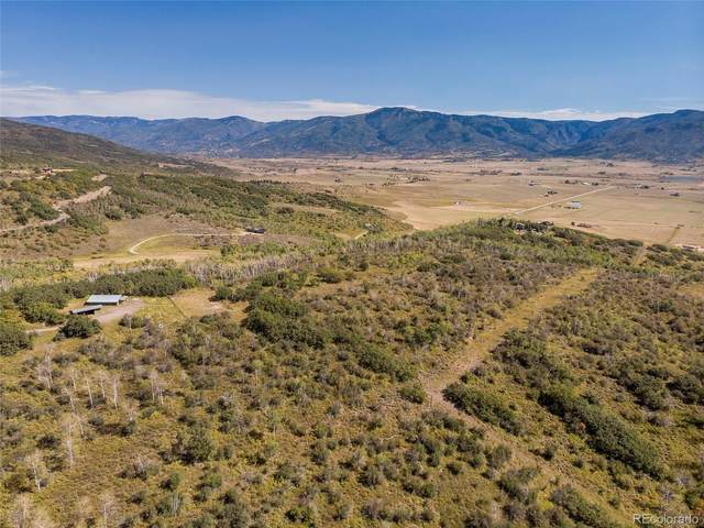 29405 Big Valley Drive, Steamboat Springs, CO 80487 (MLS #4546827) :: 8z Real Estate