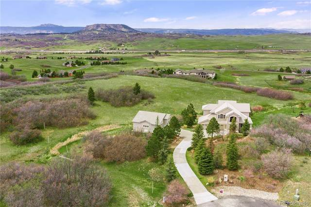 719 Bold Sun Circle, Castle Rock, CO 80104 (MLS #4561901) :: 8z Real Estate
