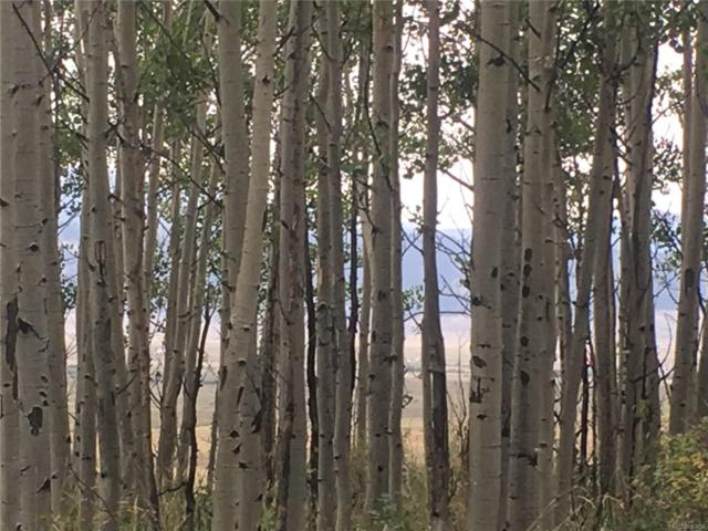 000 Michigan Hill Road, Jefferson, CO 80456 (#4683851) :: Structure CO Group