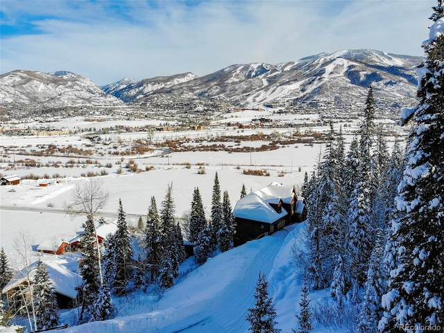 36885 Tree Haus Drive, Steamboat Springs, CO 80487 (#4687204) :: Bring Home Denver with Keller Williams Downtown Realty LLC