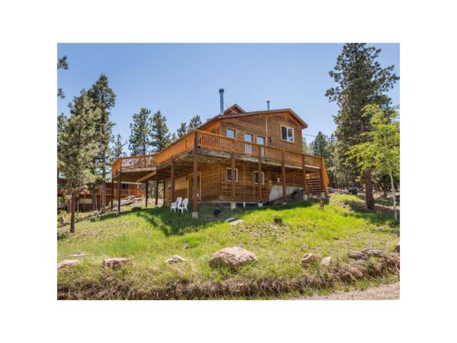 33508 Persistence Avenue, Pine, CO 80470 (MLS #4691626) :: 8z Real Estate