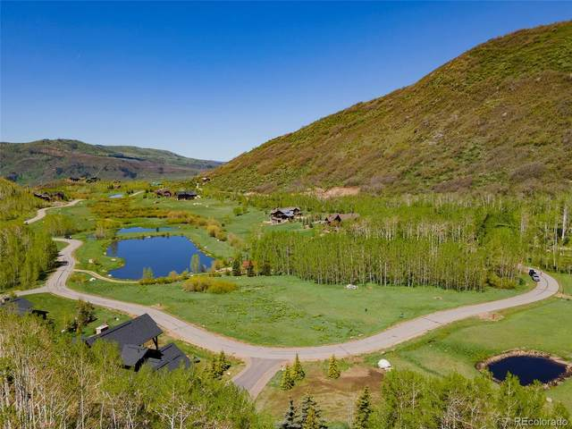2980 Littlefish Trail, Steamboat Springs, CO 80487 (#4758954) :: The DeGrood Team