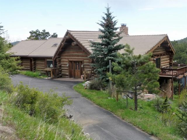 1651 Old Squaw Pass Road, Evergreen, CO 80439 (#4950962) :: Bring Home Denver