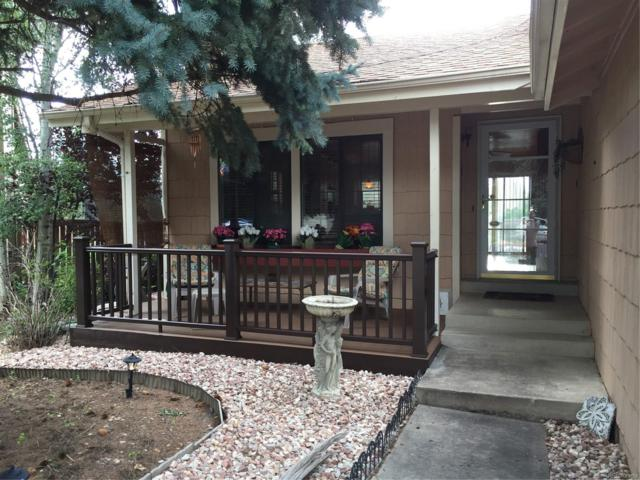 8991 S Coyote Street, Highlands Ranch, CO 80126 (MLS #5050776) :: 8z Real Estate