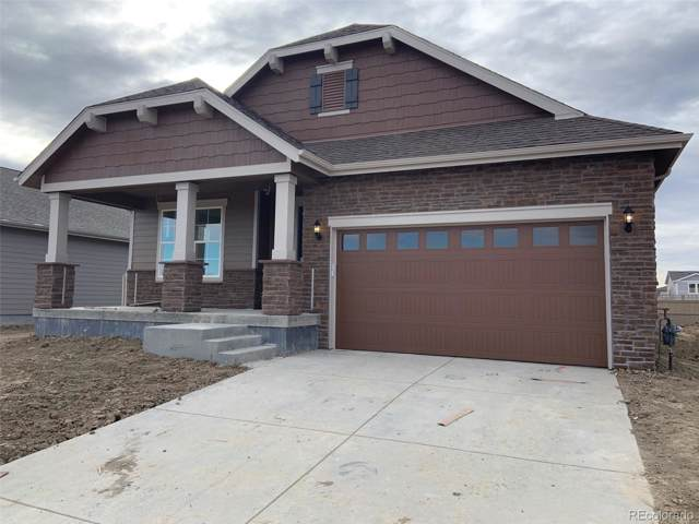 508 176th Avenue, Broomfield, CO 80023 (#5145444) :: HergGroup Denver