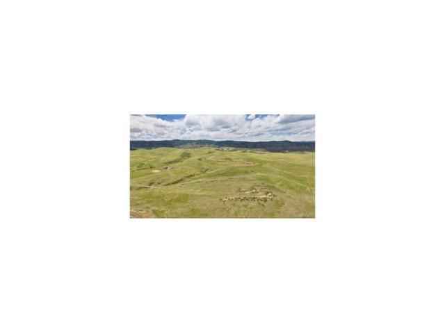 5187 Horseshoe Trail, Sedalia, CO 80135 (MLS #5250205) :: 8z Real Estate