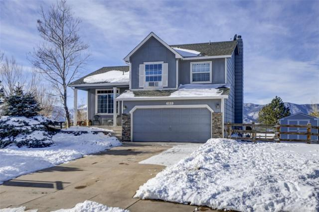 183 Misty Creek Drive, Monument, CO 80132 (#5485040) :: Bicker Realty