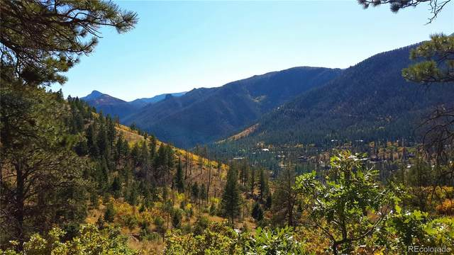 8210 Bear Dance Heights, Cascade, CO 80809 (#5540831) :: Real Estate Professionals