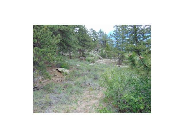 19 Forgotten Way, Estes Park, CO 80517 (MLS #5542890) :: 8z Real Estate