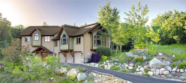 617 Meadowbrook Circle, Steamboat Springs, CO 80487 (#5664431) :: Bring Home Denver