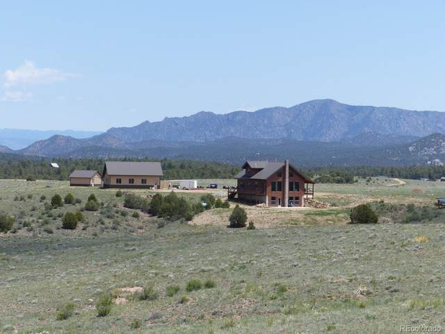 330 Acorn Road, Cotopaxi, CO 81223 (MLS #5761890) :: 8z Real Estate