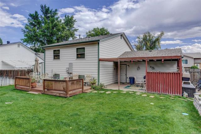 8567 W Toller Avenue, Littleton, CO 80128 (#5787339) :: Wisdom Real Estate