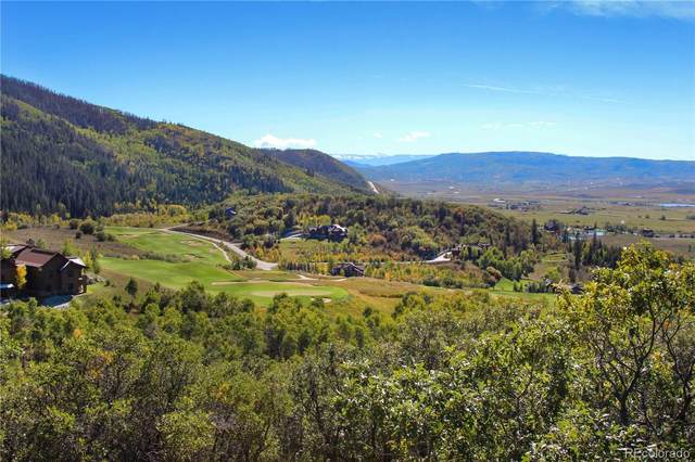 33905 Catamount Drive, Steamboat Springs, CO 80487 (#5789580) :: The HomeSmiths Team - Keller Williams