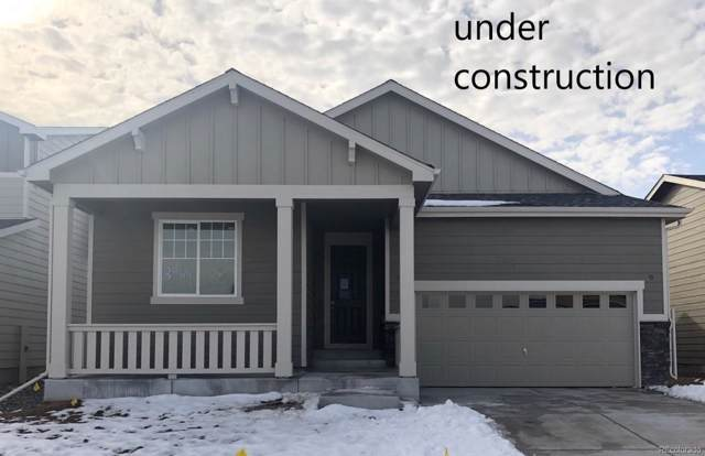 8966 E 105th Place, Commerce City, CO 80640 (MLS #5796749) :: Bliss Realty Group