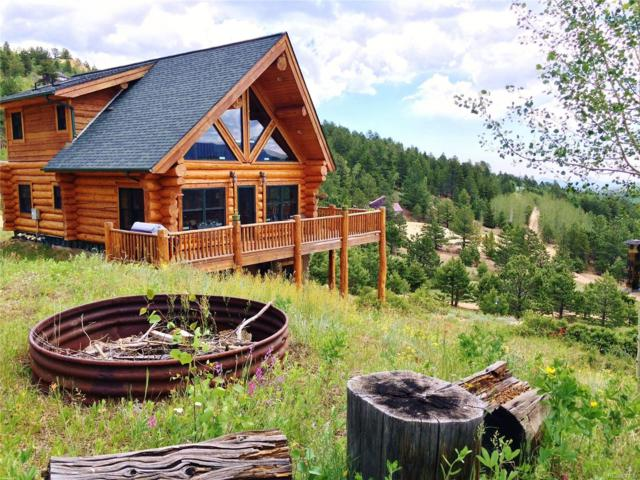 34 Golden Dollar Drive, Central City, CO 80427 (MLS #5827740) :: 8z Real Estate