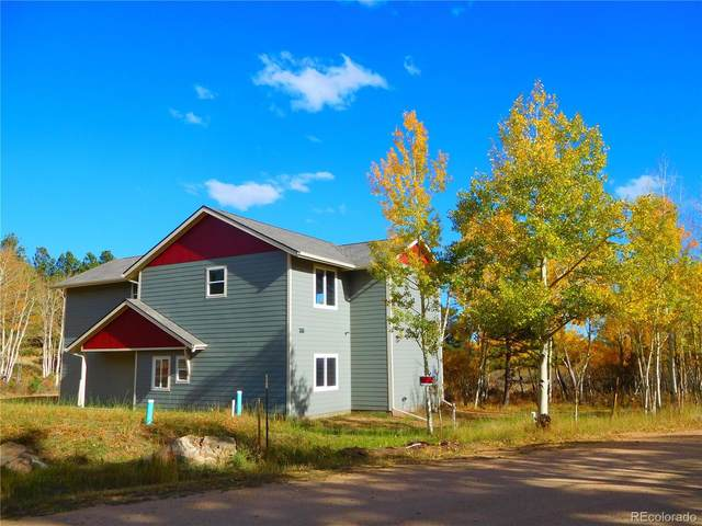 46 Sunset Drive, Bailey, CO 80421 (#5850018) :: Sultan Newman Group
