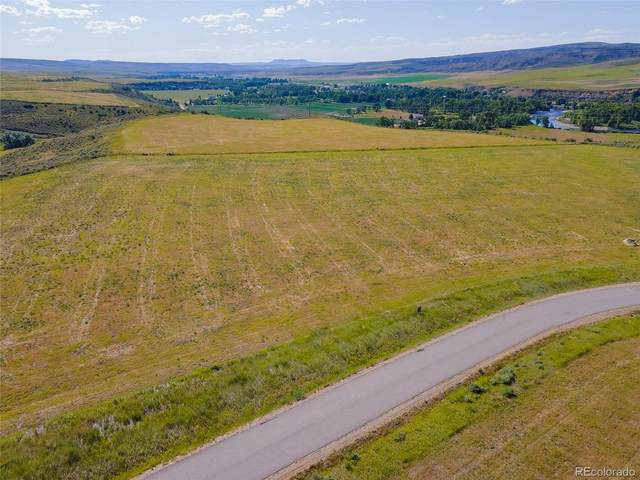 38775 Ridge Line Court, Hayden, CO 81639 (MLS #5905945) :: Neuhaus Real Estate, Inc.