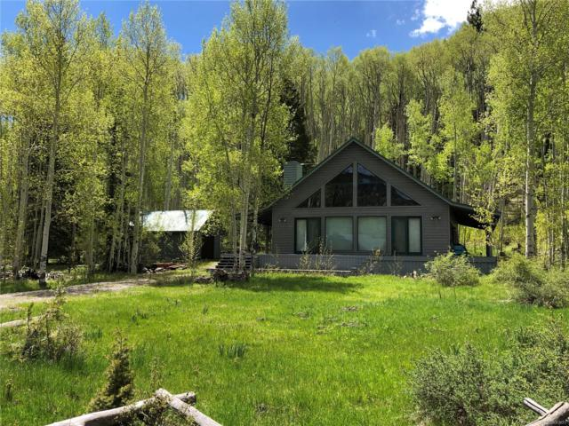 410 Elk Meadow Run, Antonito, CO 81120 (#5914358) :: The DeGrood Team