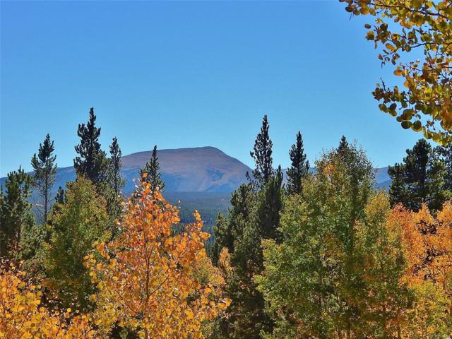 Glacier Ridge Road, Alma, CO 80420 (#5927411) :: Structure CO Group
