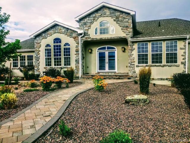 1254 Colt Circle, Castle Rock, CO 80109 (MLS #5961383) :: 8z Real Estate