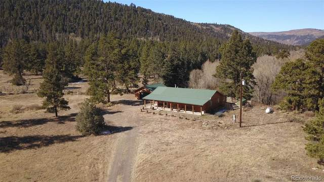 247 Massey Creek Road, Antonito, CO 81120 (#6014623) :: The DeGrood Team