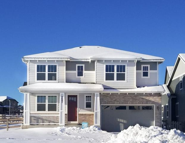 9687 Eagle River Street, Littleton, CO 80125 (#6089915) :: House Hunters Colorado