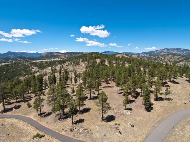 14937 Wilson Peak Road, Pine, CO 80470 (#6095140) :: The DeGrood Team